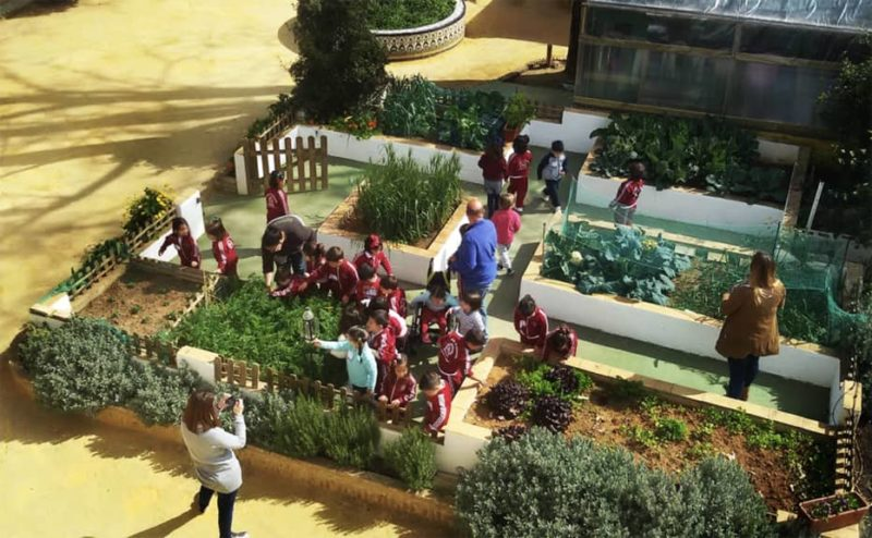 Huerto de la Granja escuela