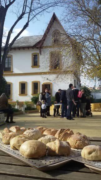 taller de recetas de pan en la granja escuela La Buhardilla