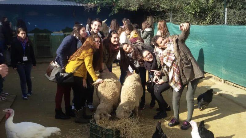 Nuestros animales en la granja escuela La Buhardilla